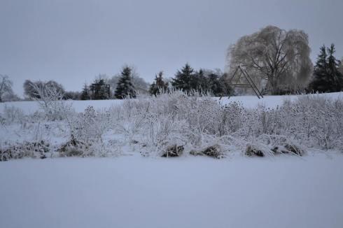 britt winter1