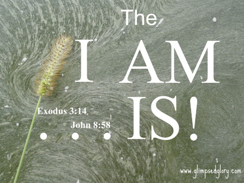 The I AM IS