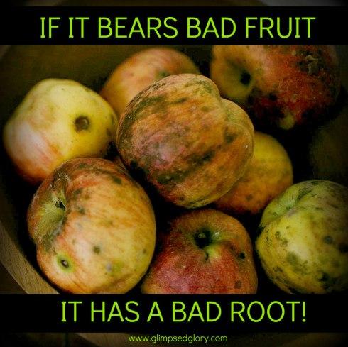 Image result for bad fruit